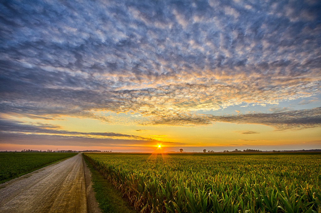Late Fall Desktop Wallpaper 43 Indiana Cornfield Sunset 1 I Was Driving Home From A