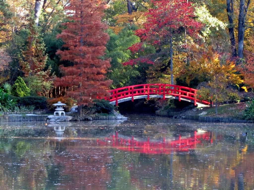 Fall Wooden Wallpaper Japanese Bridge Sarah Duke Gardens Japanese Bridge