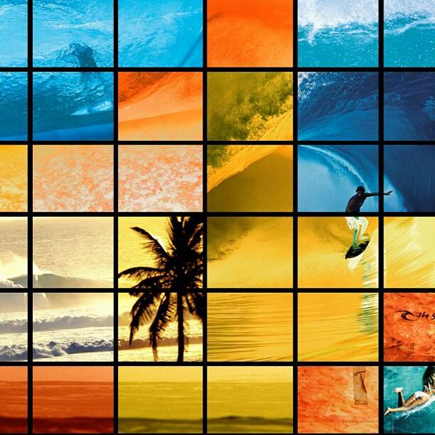 Free Girl Wallpaper Wallpaper Surfer Surf Wave Ocean Palmtree Girl Biki