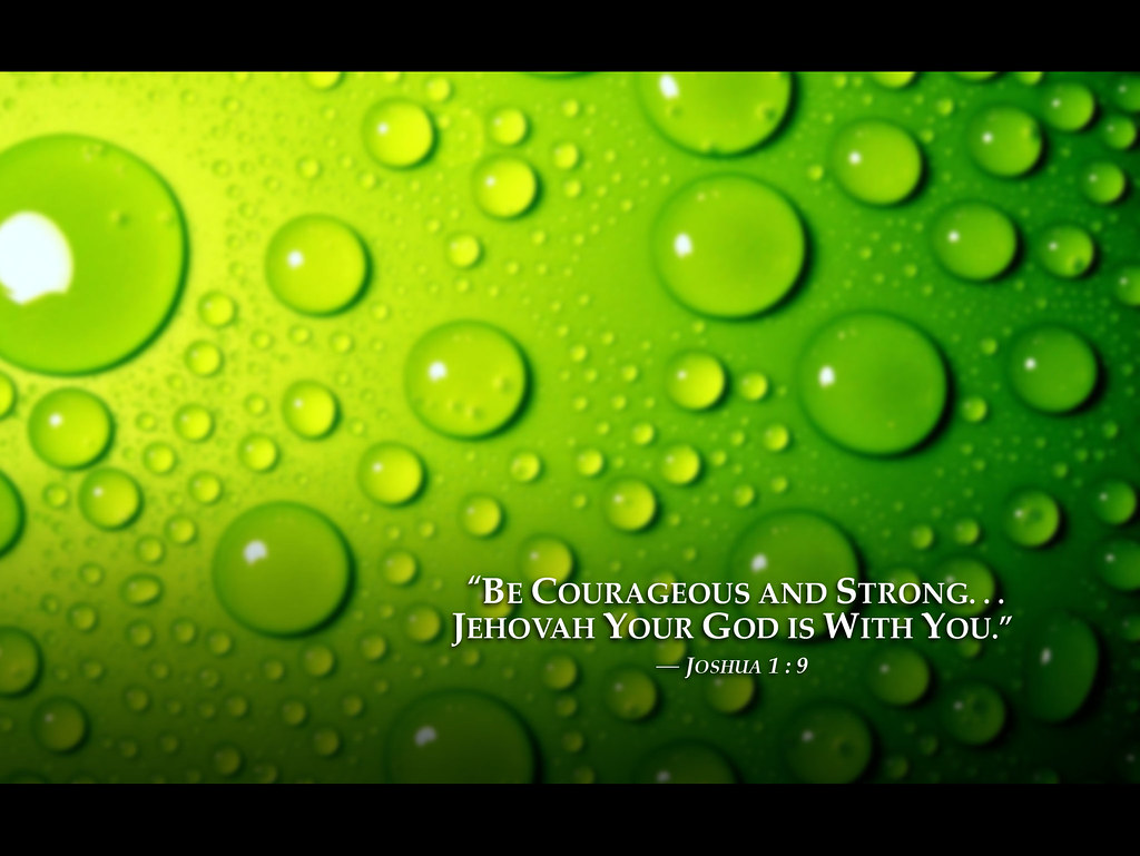 Water Iphone Wallpaper Green Water Drops 2013 Jehovah Witnesses Yeartext For Ipad