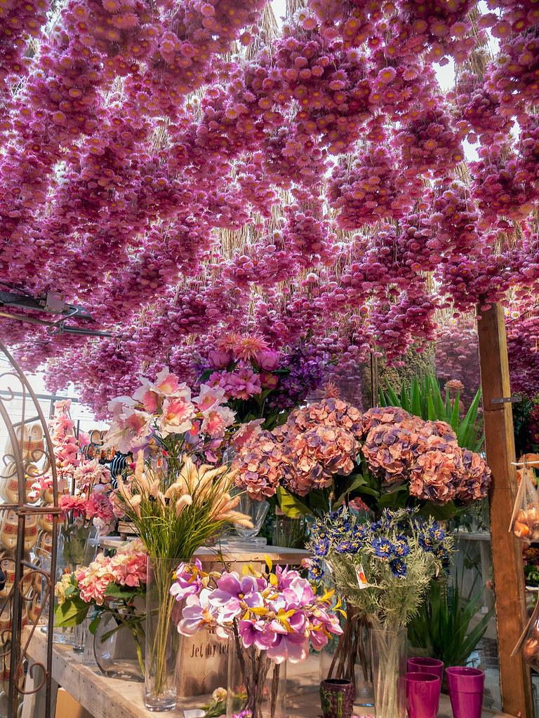 Wallpaper Sakura 3d Amsterdam Flower Market Hanging Garden Flowers Hang