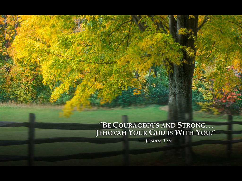 Hd 3d Computer Wallpapers Country Fence 2013 Jehovah Witnesses Yeartext For Ipad Ip