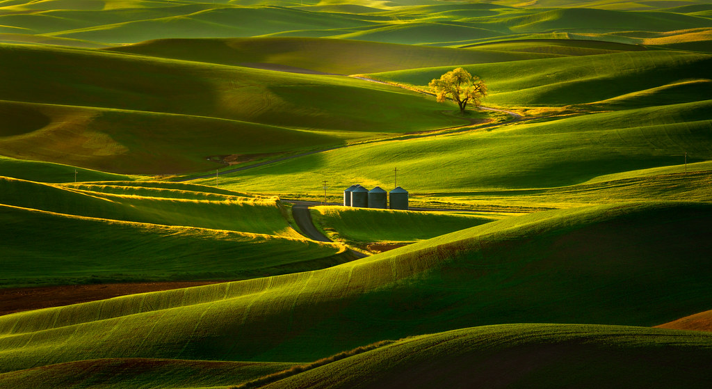 Cool 3d World Wallpaper Rolling Hills Of The Palouse I Had An Unhealthy