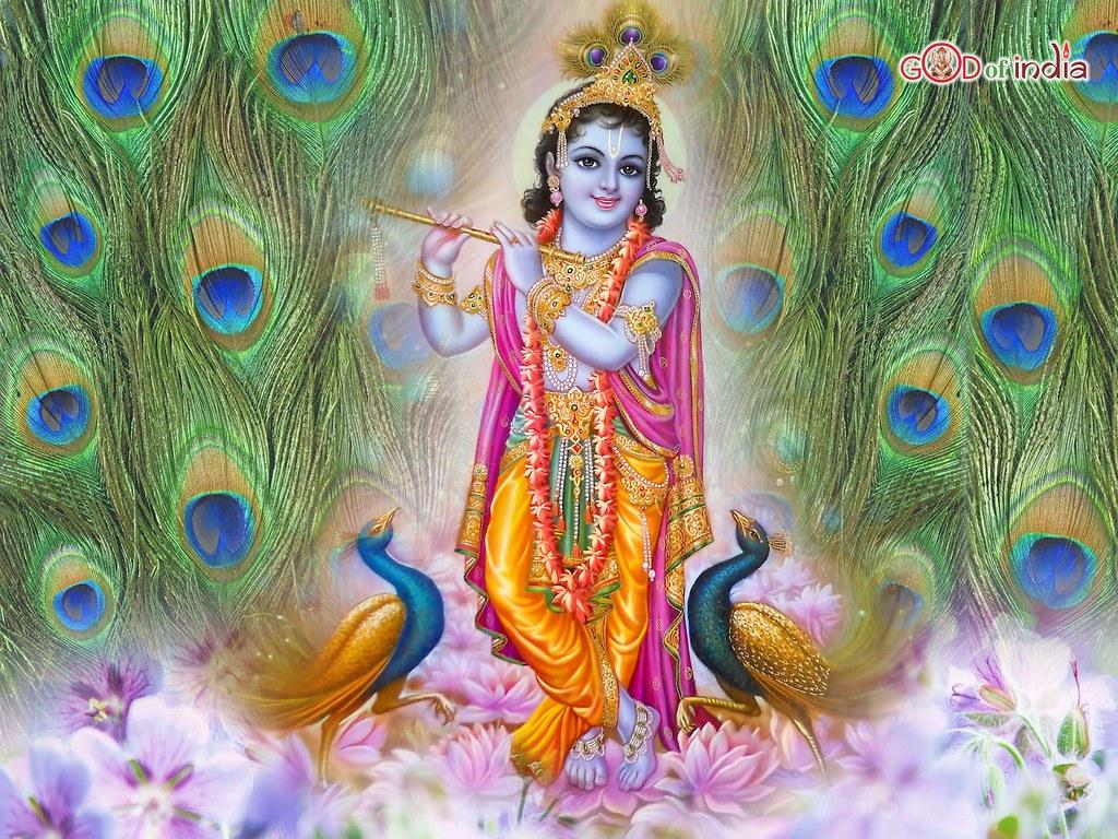 3d Radha Krishna Wallpaper Download Krishna Playing Madhur Bansuri With Peacock Feather Backgr