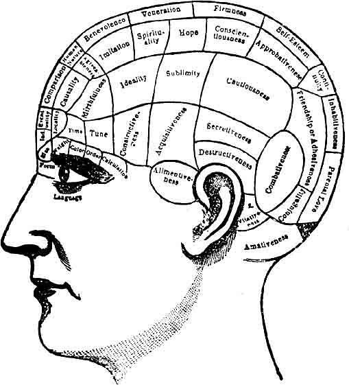 psychology career diagram of spheres