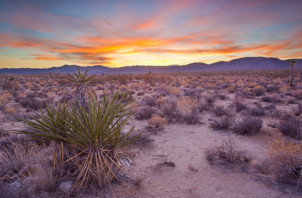 Some 3d Wallpapers Sunset In The Mojave Desert Sunset Mojave Desert