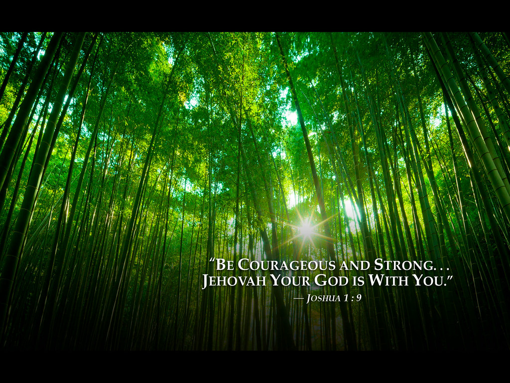 3d World Map Wallpaper For Pc Bambooforest 2013 Jehovah Witnesses Yeartext For Ipad Ipa