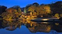 Night time light-up of Japanese garden Rikugien @Komagome ...