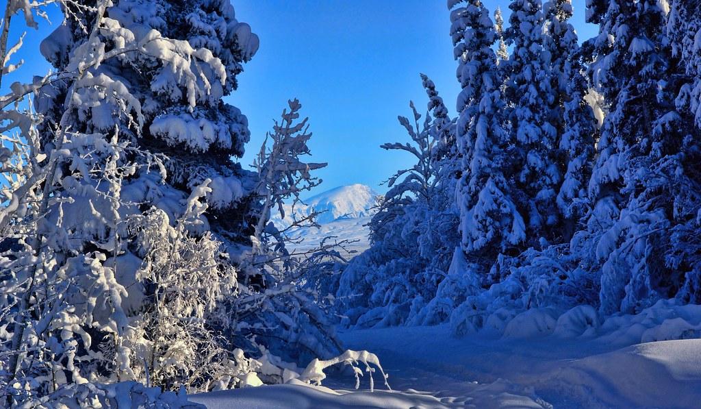 3d Scenery Wallpaper For Desktop Winter Blues Alaska It Was 29 F Degrees Below Zero In