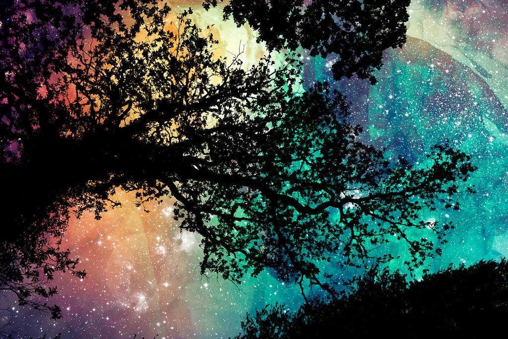 3d Wallpaper For My Pc Sam S Organic Universe Photomanipulation Combining