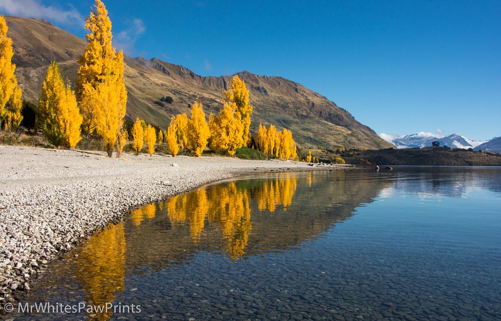 Wallpaper Of Water Fall Waterfall Creek Lake Wanaka Wanaka New Zealand Dianne