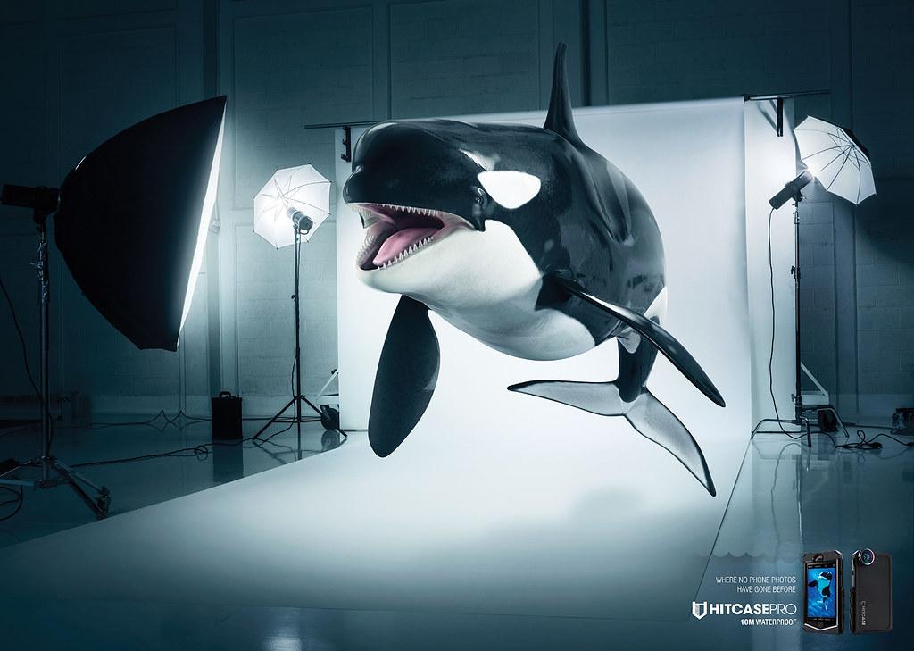 Hitcasepro 10 Waterproof Case - Immersion Wale