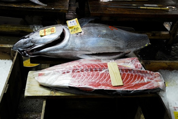 Bluefin Tuna sold for $175,000 at Tokyo fish market. By Jake Tilson.