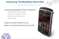 BlackBerry Storm PowerPoint - Image 10 of 17