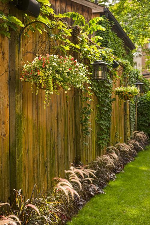 Medium Of Fence Hanging Garden