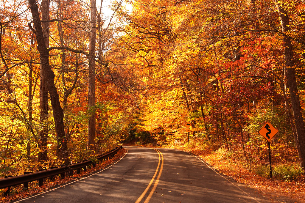 Free Desktop Wallpaper Fall Season Autumn Road October 31 2010 Autumn In New Jersey