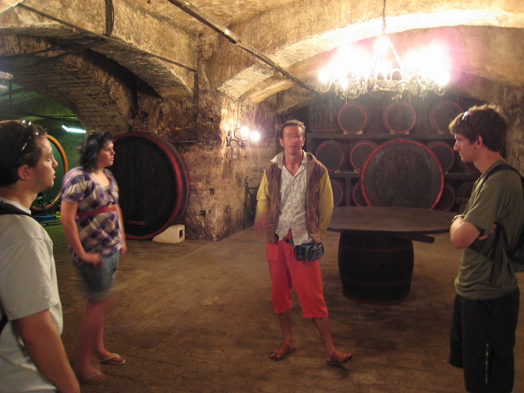 Cellar ... & Cellar Translate - Natashamillerweb