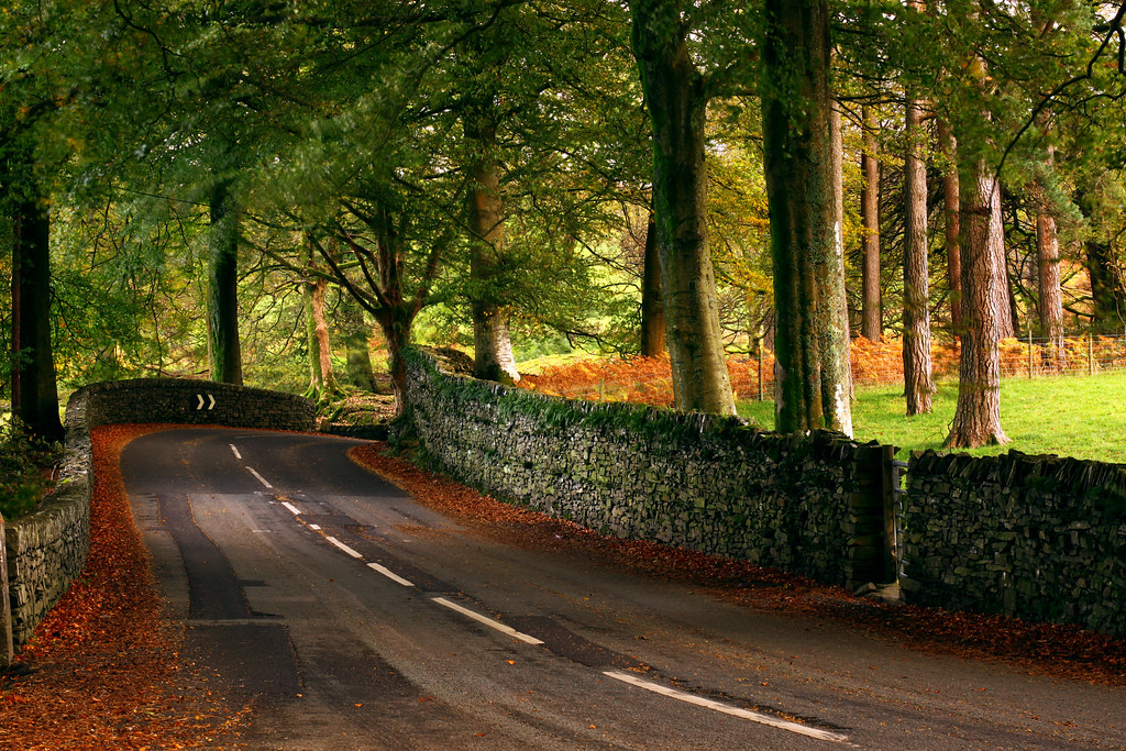 Free Desktop Wallpaper Fall Scenes Autumn Road A Road Somewhere In Between Ambleside