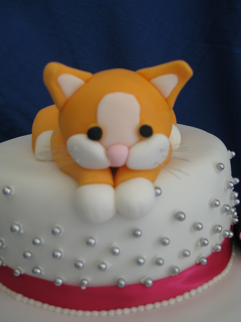 Cute Wallpapers For Girls Designs Kitten Cat Cake Samantha Tadman Flickr