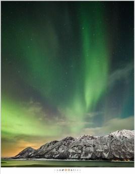 aurora borealis, lofoten, noorderlicht