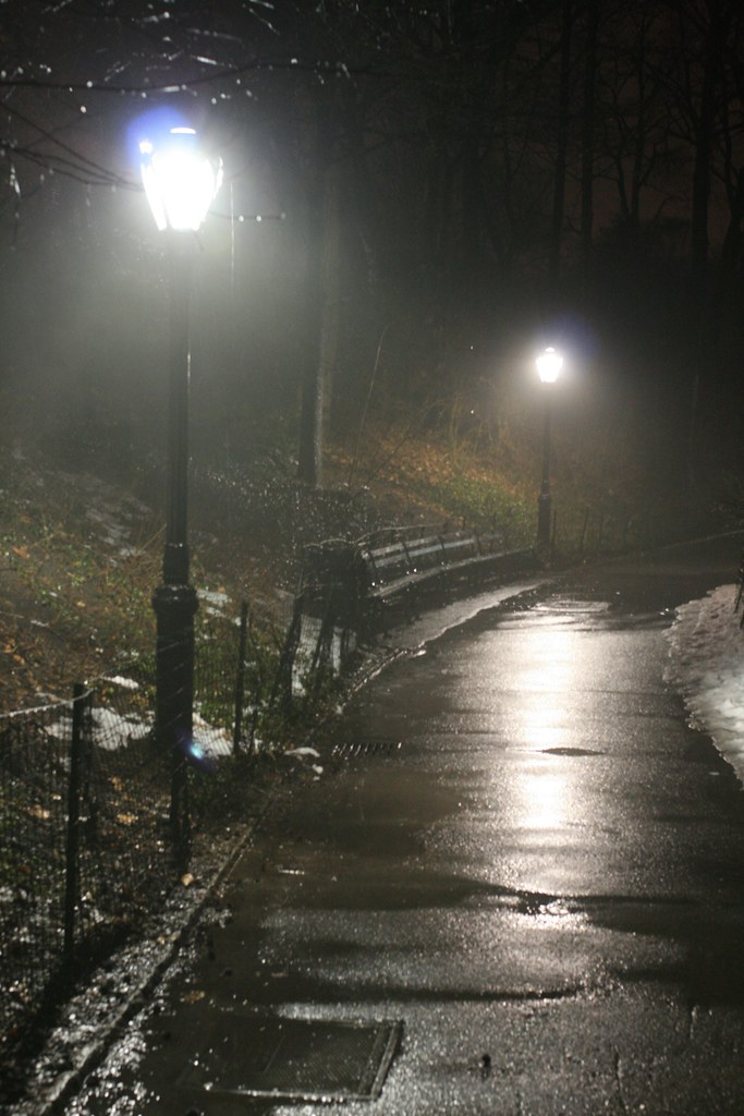 Fall In Central Park Wallpaper Rainy Night In Central Park Was A Rainy Rainy Day In