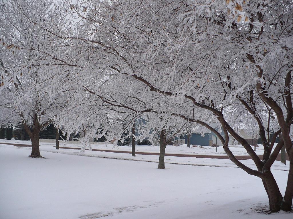 Live 3d Wallpaper Snowing Winter Wonderland Winter Wonderland Stashabella Flickr