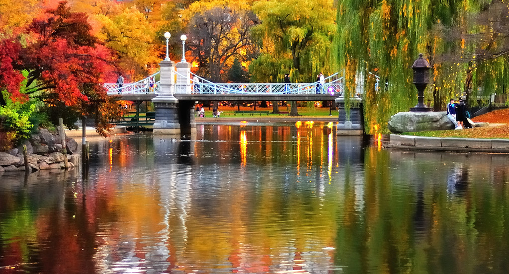 New England Fall Foliage Desktop Wallpaper Impressionist Boston Public Garden Sunset Light