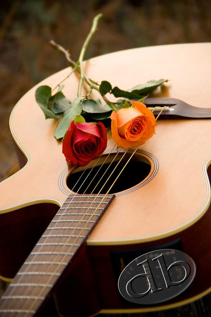 3d Guitar Wallpaper Guitar Amp Roses From A 25th Wedding Anniversary Photo