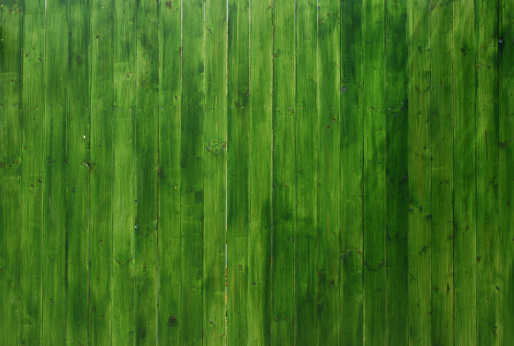 Free Wallpaper Fall Colours Vivid Green Wooden Texture License This Photo On Getty