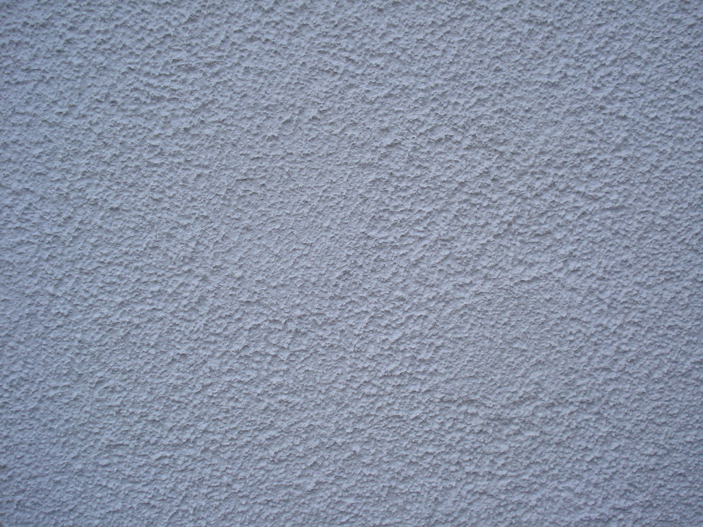 Exterior Textured Paint Finish Close Up Fox
