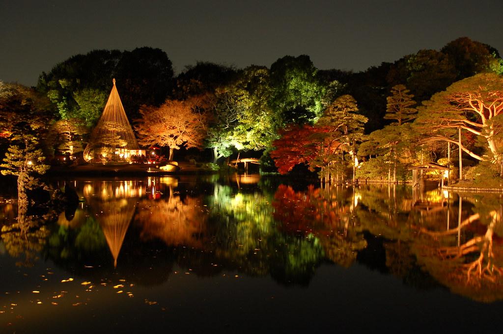 Japan Fall Wallpaper Autumn Momiji Lightup At Rikugien Tokyo Marufish Flickr