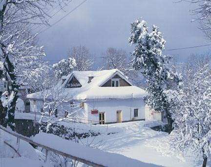 Free 3d Snow Falling Wallpaper Murree In December Aame Osia Flickr