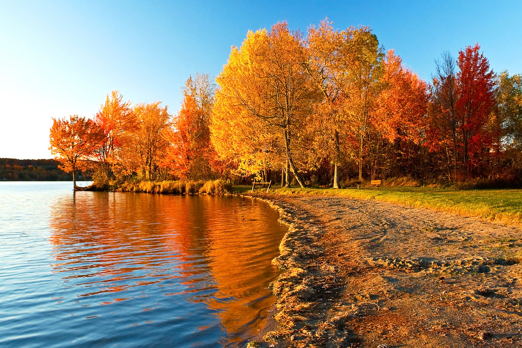 Fall Live Wallpaper For Pc Beach Foliage Lake Carmi State Park Vermont Taken With