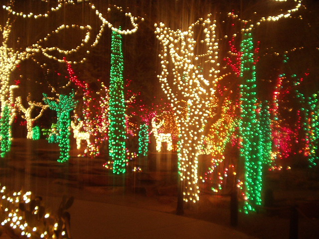3d Wallpaper Ideas Christmas Light Show At Ethel M Cactus Garden Near Vegas