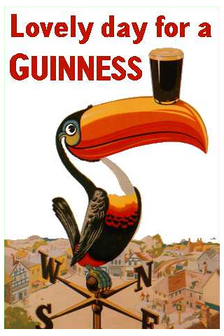 Wallpaper 3d Iphone 6 Guinness Toucan Iphone Wallpaper Guinness Toucan With A