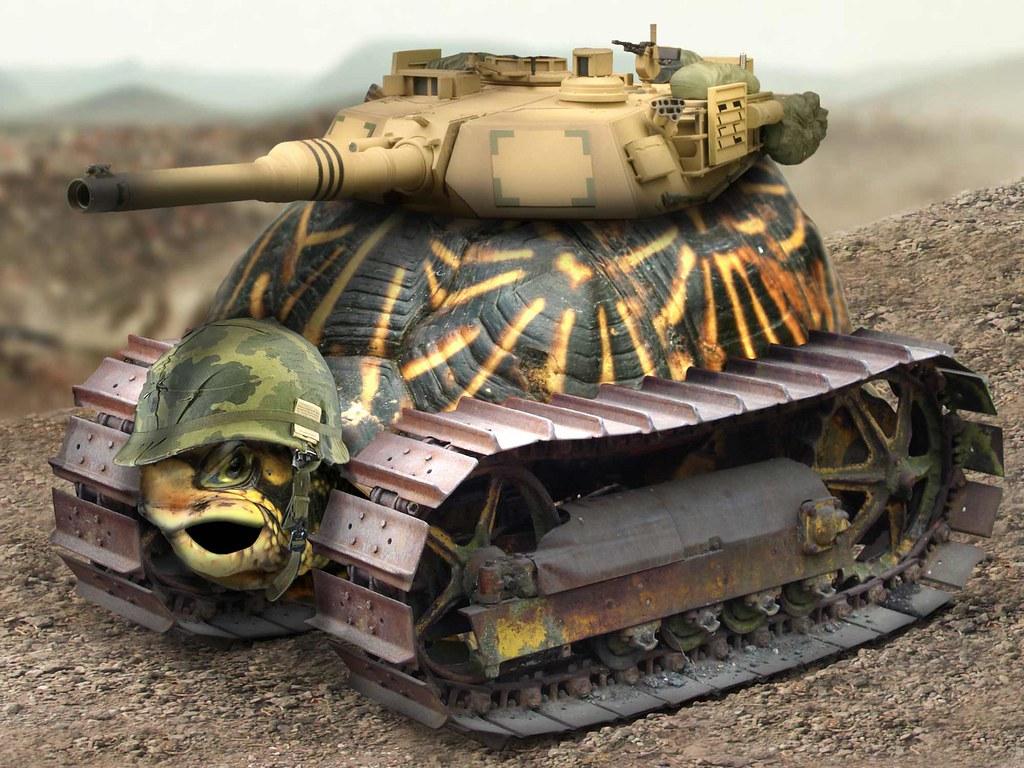Cute Orca Wallpaper War Tank Turtle Just Kiding Zorro013 Flickr