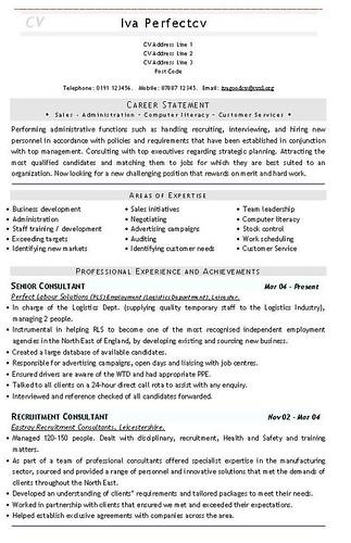 template cv consultant it