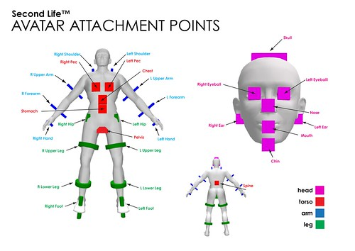 3d Avatar 2 Avatar Attachment Points | Teaching Material For Second