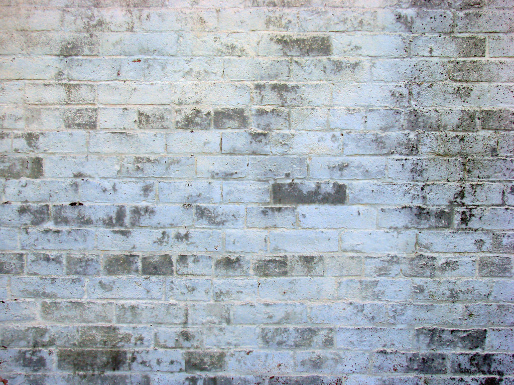 White Brick Wall White-brick-wall | Jacob Robinson | Flickr