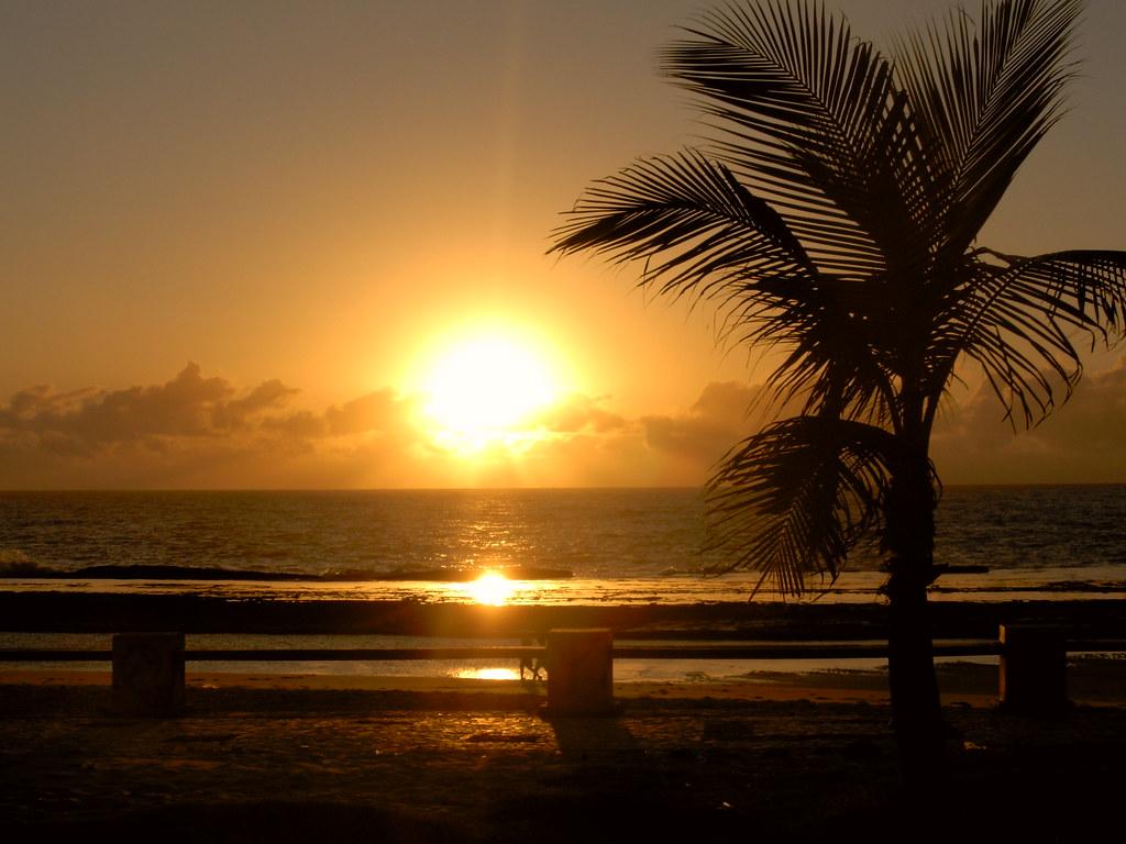 Sunrise 3d Wallpaper Nascer Do Sol Na Praia Do Meio Nascer Do Sol Na Praia Do