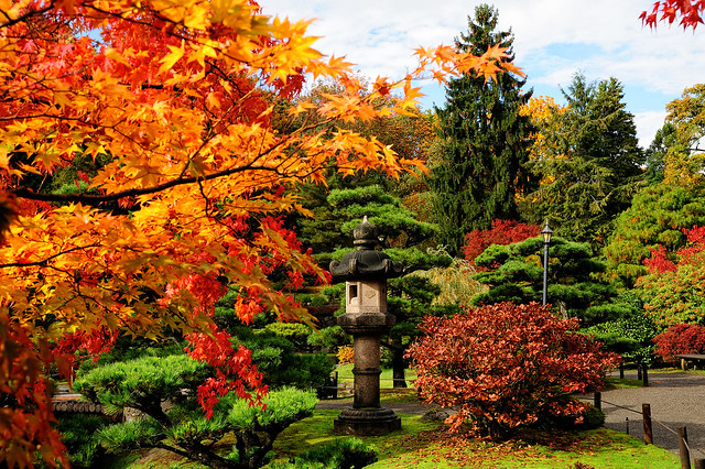Gorgeous Fall Wallpaper Fall Colors Why Fall Is My Favorite Season At The