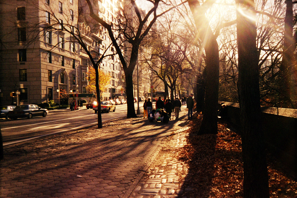 Fall In Central Park Wallpaper New York City Street At Thanksgiving This Is A Picture