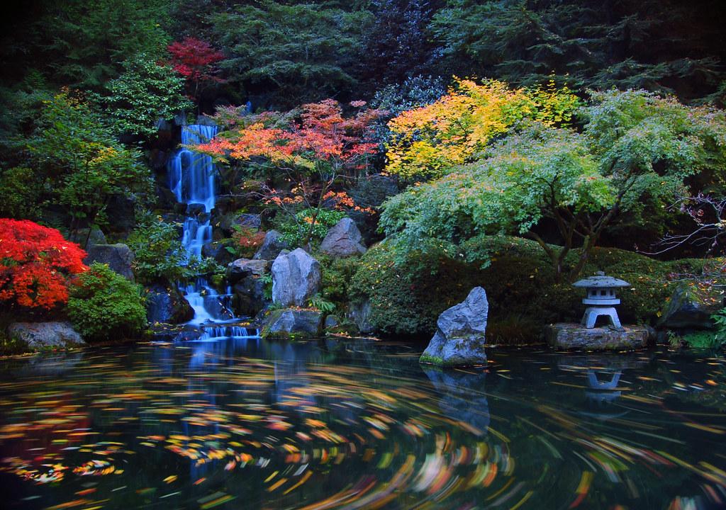Koi 3d Wallpaper Heavenly Falls At The Japanese Gardens 1 In