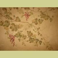 Grape Vine Stencil Over decorative plaster. Wall stencils ...