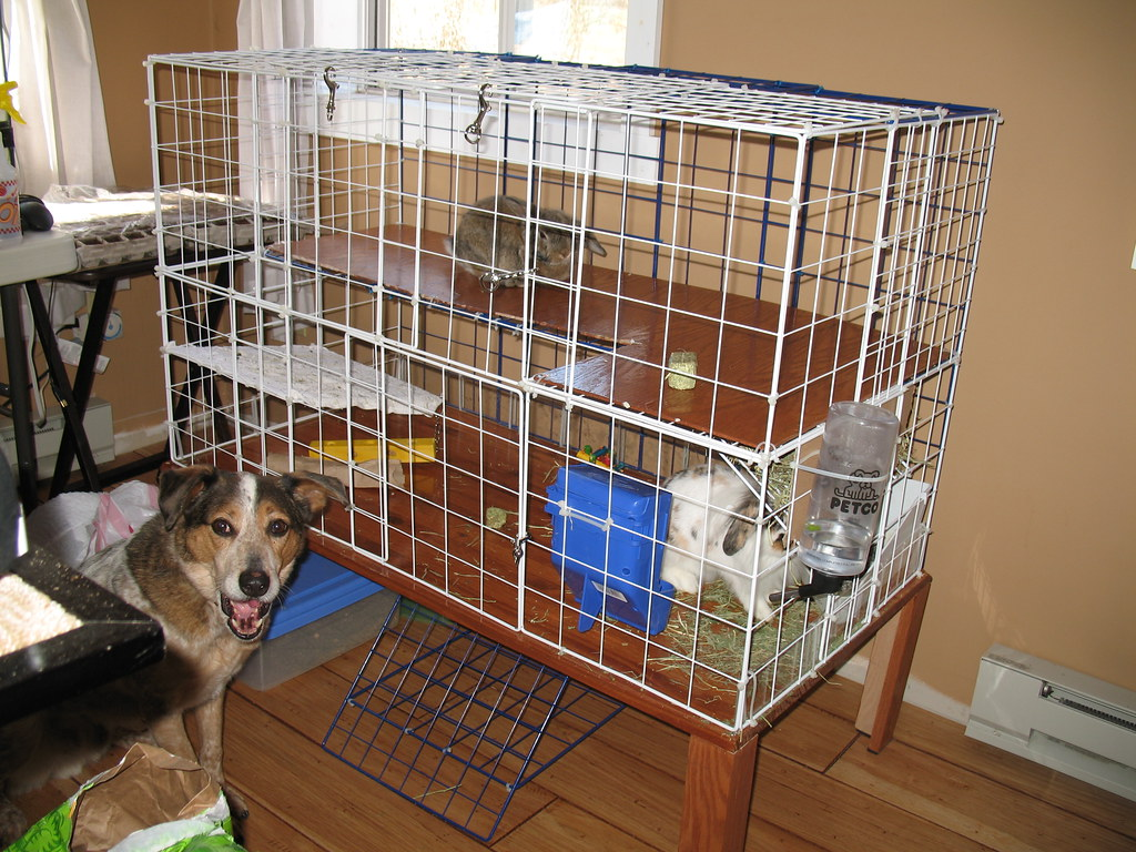 Diy Cage For Rabbit Homemade Rabbit Cage 2 Cage Made Of A Few Boards A