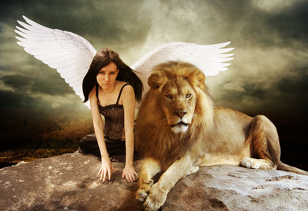 Hd Christian Quotes Wallpapers 1920x1080 The Angel And The Lion El 224 Ngel Y El Le 242 N Marco