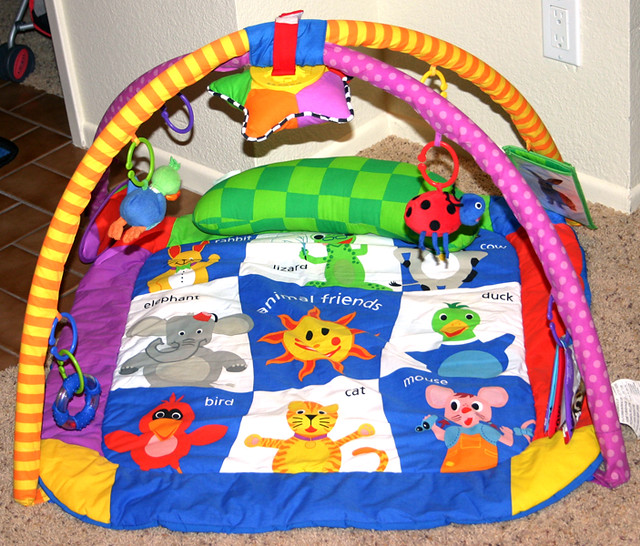 Baby Einstein Play Gym Brightly Colored Soft Mat