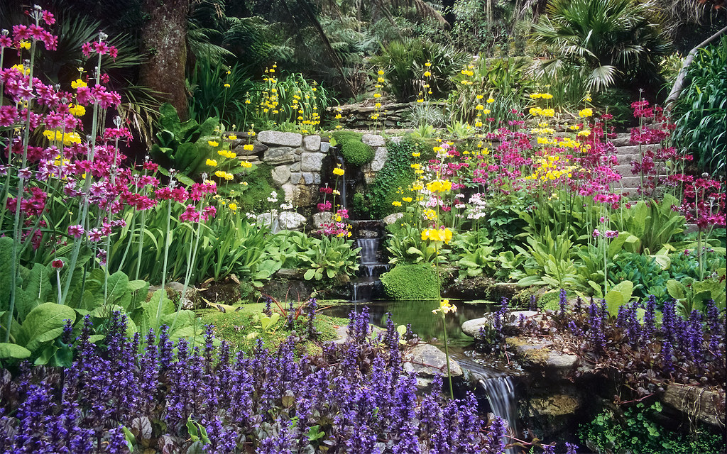 Desktop Wallpaper 3d French Country Water In English Gardens 10 Of 33 Stream Side Planting