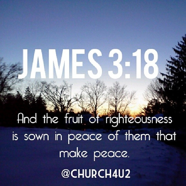 Jobs Create Peace Nursing Jobs By License And Specialty Allnurses Jobs James 318 Quot;and The Fruit Of Righteousness Is Sown In Peac