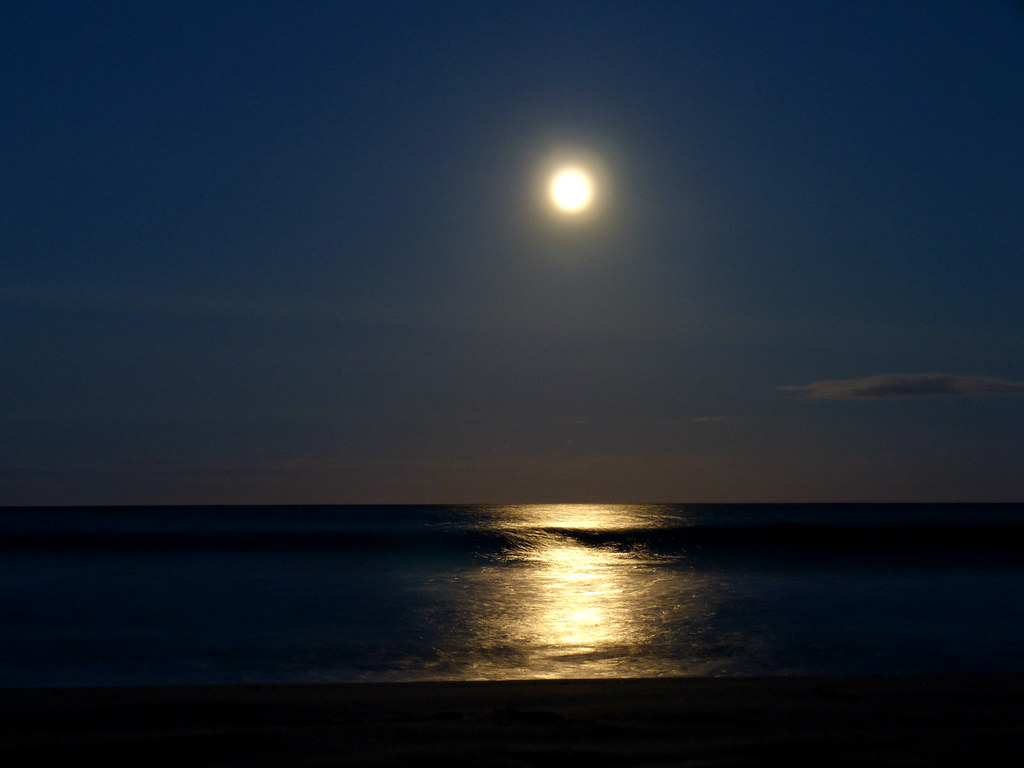 India Wallpaper 3d In The Moonlight Sea More From Sundays Super Moon